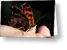 Palm Pilot Greeting Card
