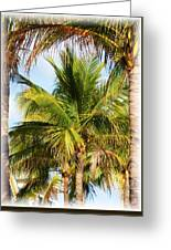 Palm Portrait Greeting Card