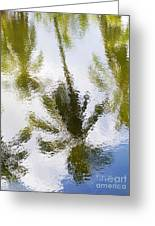 Palm Reflections Greeting Card