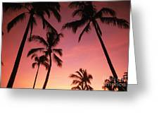 Palm Silhouette Greeting Card