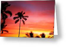 Palm Silhouettes Greeting Card