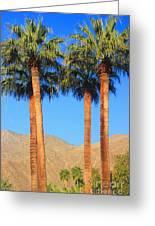 Palm Springs Greeting Card