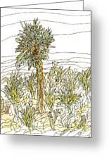 Palm Tree 1 Greeting Card