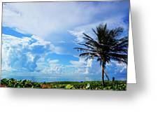 Palm Tree Dream Delray Beach Florida Greeting Card