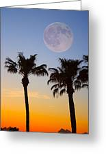 Palm Tree Full Moon Sunset Greeting Card