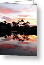 Palm Tree Inlet 2 Greeting Card
