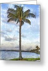 Palm Tree Pencil Greeting Card