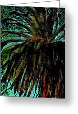 Palm Trees 40 Version 2 Greeting Card