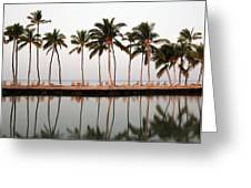 Palm Trees And Beach Chairs Greeting Card