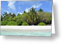 Palm Trees And Exotic Vegetation On The Beach Of An Island In Maldives Greeting Card