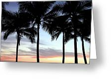 Palm Trees At Sunset Greeting Card