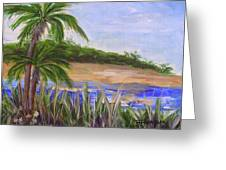 Palm Trees In Florida Cove Greeting Card