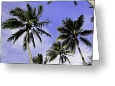 Palm Trees Greeting Card