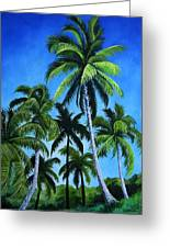 Palm Trees Under A Blue Sky Greeting Card