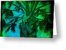 Palm Visions Greeting Card