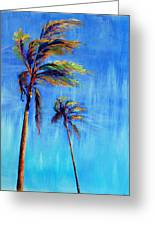 Palmas Viento Greeting Card