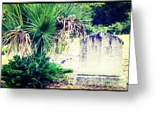 Palmetto And Head Stone Greeting Card