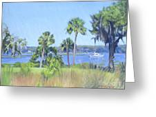 Palmetto Bluff Backyard Greeting Card