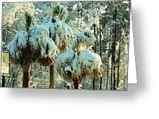 Palmetto Row Greeting Card