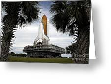 Palmetto Trees Frame Space Shuttle Greeting Card by Stocktrek Images