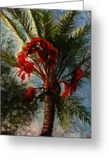 Palm's A Glow Greeting Card