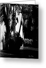 Palms And Arches Greeting Card