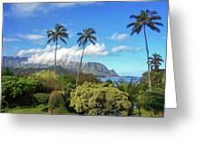 Palms At Hanalei Greeting Card