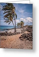 Palms At Lapakahi Greeting Card
