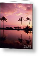Palms At Still Lagoon Greeting Card