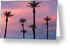 Palms At Sunset Greeting Card
