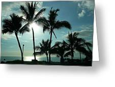 Palms In Silhouette Greeting Card