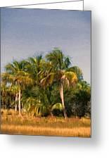 Palms - Naples Florida Greeting Card
