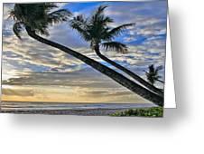 Palms Of Kaanapali Greeting Card