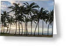 Palms Of Kauai Greeting Card