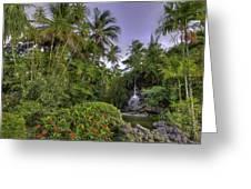 Palms Pool Greeting Card