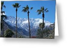 Palms With Snow Greeting Card
