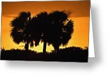 Palmset Greeting Card