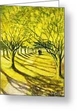 Palo Verde Pathway Greeting Card