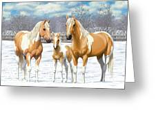 Palomino Paint Horses In Winter Pasture Greeting Card