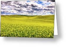 Palouse Hills Canola Greeting Card