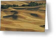 Palouse Patchwork By Jean Noren Greeting Card