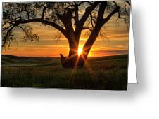 Palouse Sentinel Greeting Card
