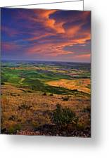 Palouse Skies Ablaze Greeting Card