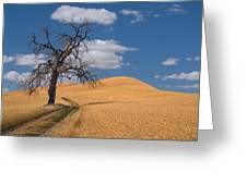 Palouse Wheat Field Greeting Card