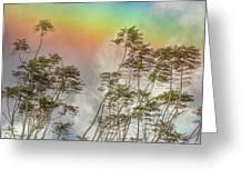 Panama Rainbow Greeting Card