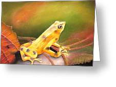 Panamenian Golden Frog Greeting Card