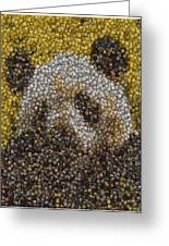Panda Coin Mosaic Greeting Card