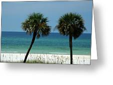 Panhandle Beaches Greeting Card
