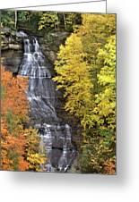 Panorama Fall Color Chapel Falls Upper Penninsula Mi Greeting Card