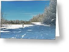 Panorama Of Winter Park Greeting Card